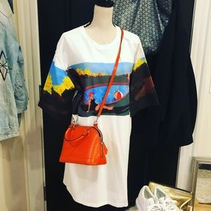 Zara Oil Painting Tee Shirt Dress Size L